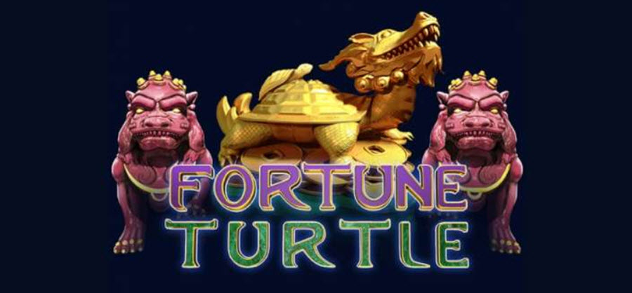 fortune turtle